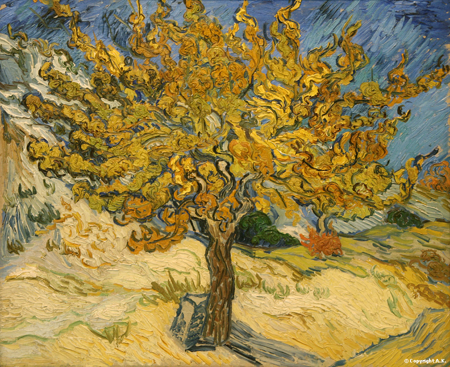 Mulberry Tree, by Vincent van Gogh